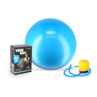 Gymnastický míč HMS YB01 75 cm, modrý